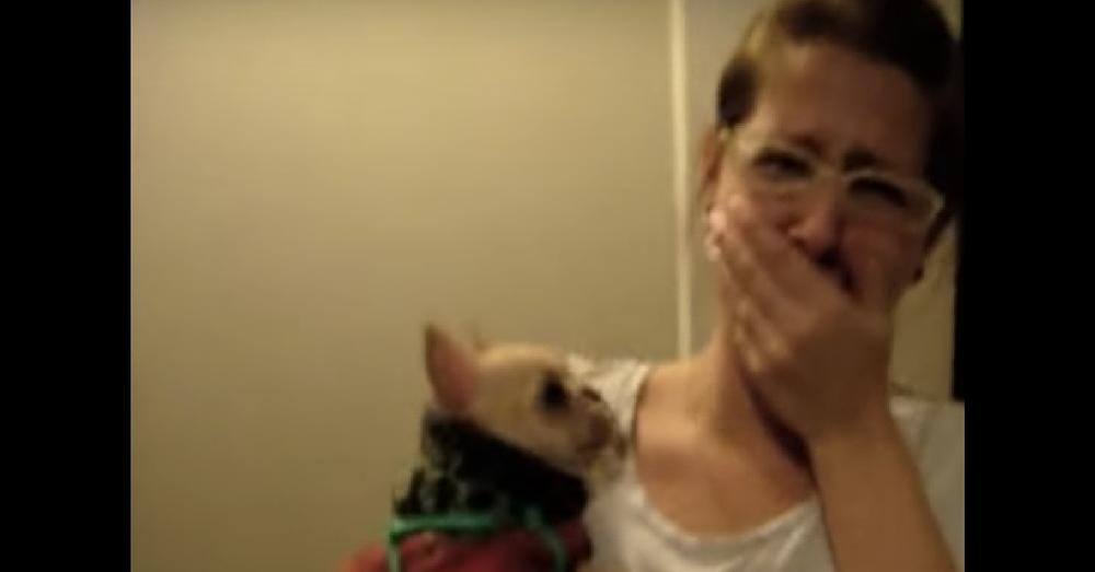 Girl Tells Dog She Loves Her. What Dog Does Next Leaves Her Speechless