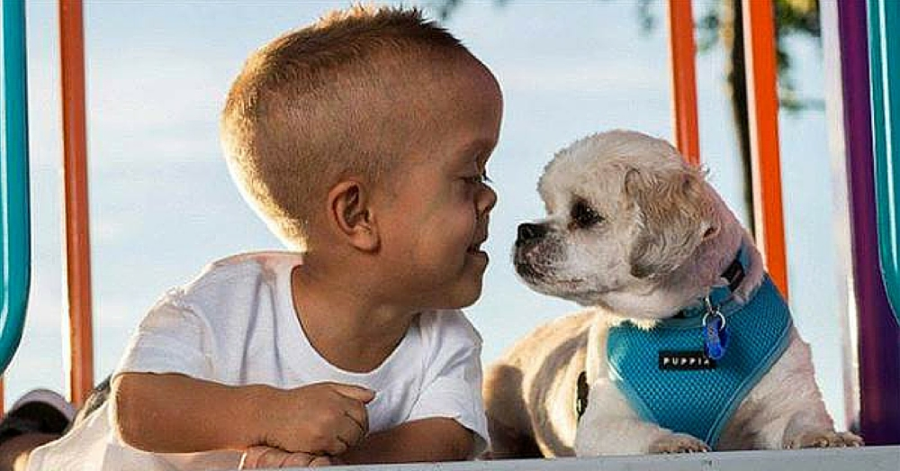 New Dog Helps 5-Year-Old Boy With Dwarfism Stand Tall To Bullies
