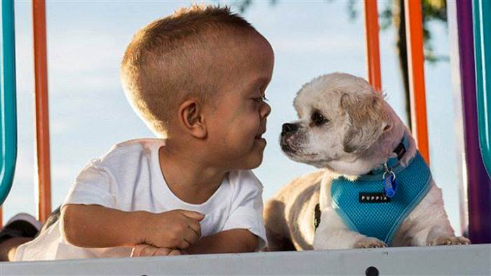 Courtesy of Yarraka Bayles. Both Quaden Bayles, 5, and his new rescue dog, Buddy, have dwarfism.