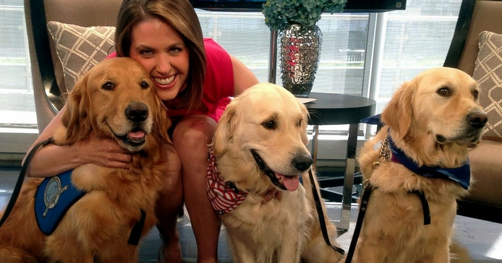 Comfort Dogs Travel To Dallas To Provide Support To Slain Police Officers' Colleagues
