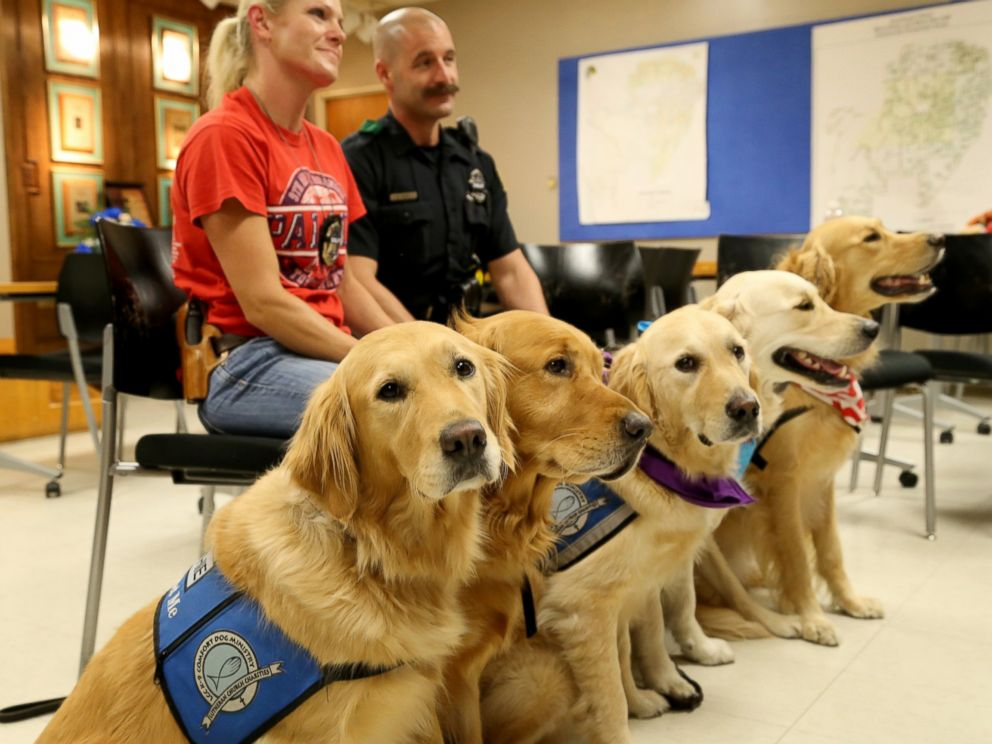 Comfort dogs from the Lutheran Church Charities in Illinois pose with a member of the Dallas Police Department.