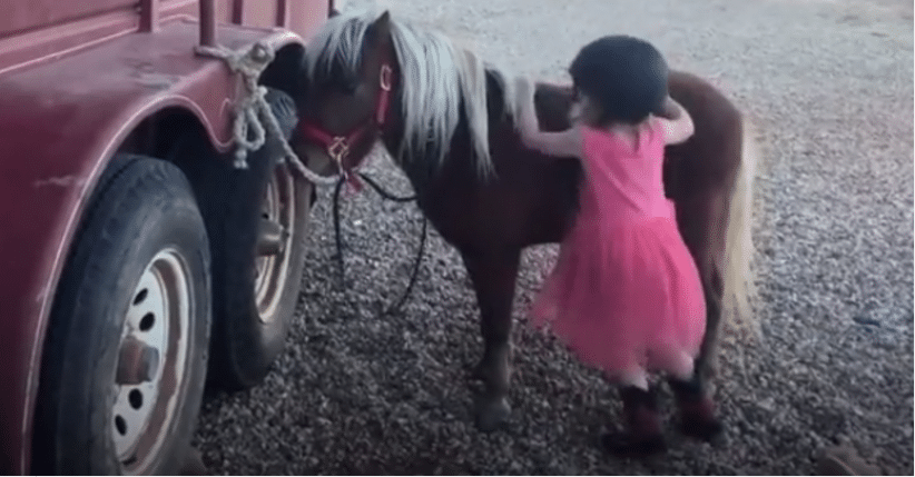 Mom Films Daughter As She Tries To Get On Pony. What Happens Next Is Going Viral!