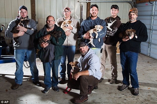 A group of seven friends adopted a litter of puppies after finding them during a friend's Bachelor party in the woods