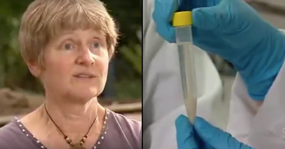 These Australian Scientists Claim To Have Found The Cure To Cancer
