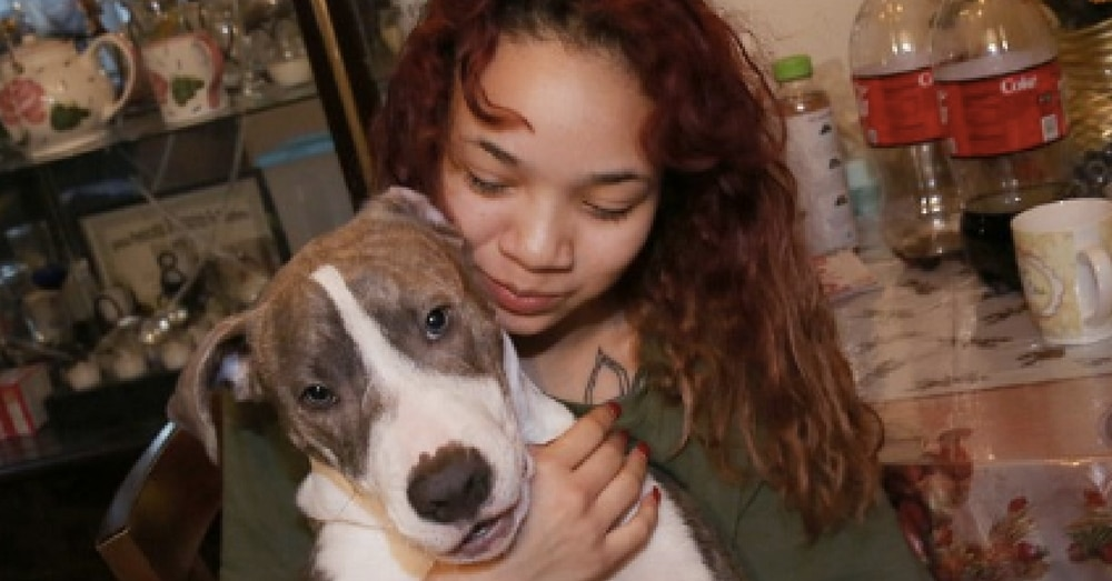 Teen Walking In Park When Rapist Grabs Her. What Her Puppy Does Next…Holy Moly!