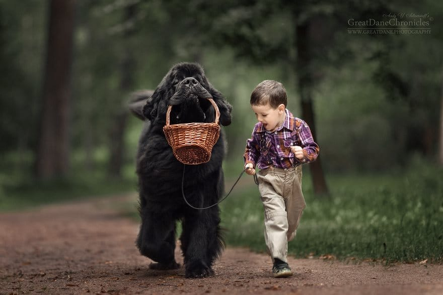 little-kids-big-dogs-photography-andy-seliverstoff-3-584fa903b4cd6__880