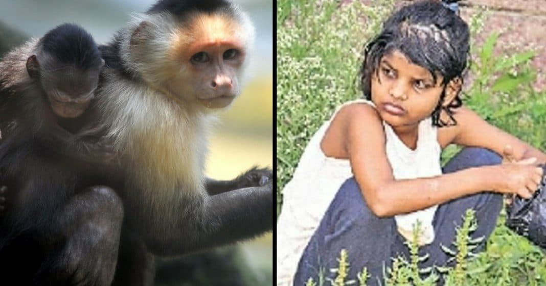 They Find Girl Crawling On All Fours, Then Realize She's Been Raised By Monkeys…