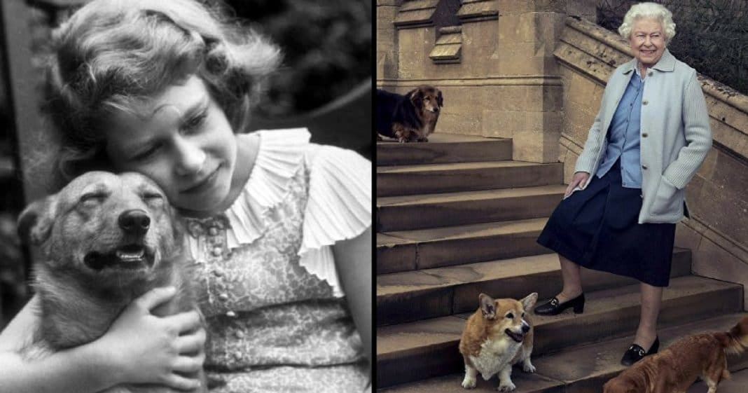 Queen Of England Dogs Names