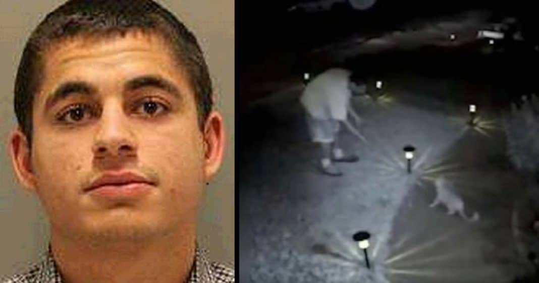 Man Caught Torturing And Murdering Neighbors' 21 Cats Finally Gets Justice He Deserves