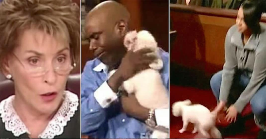Judge Judy allows a stolen dog to run loose in courtroom so its true owner can be identified
