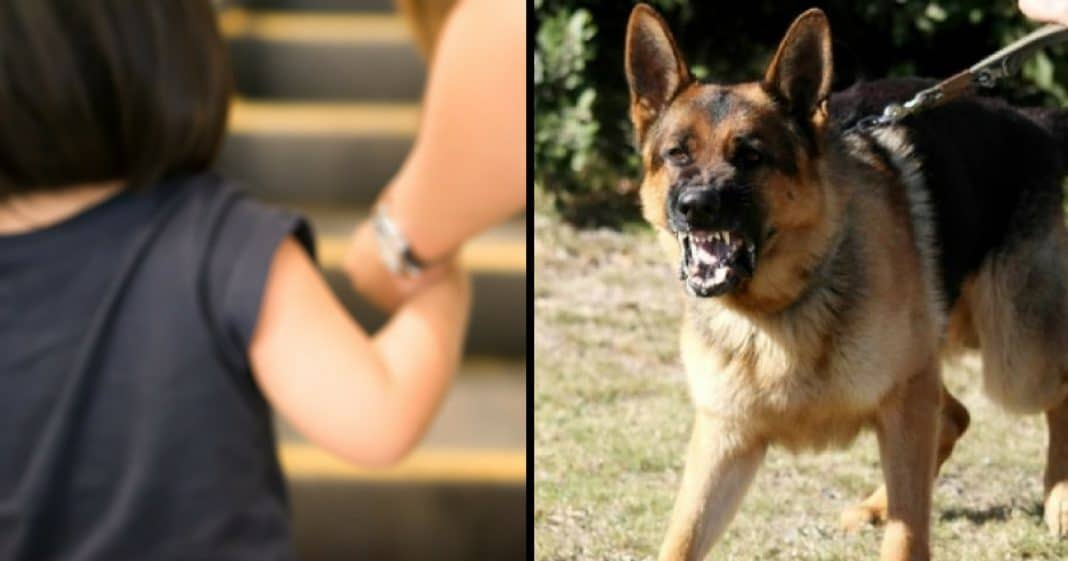 Thug Grabs 10-Yr-Old Girl, Tries To Take Off. But Her Dog Isn't About To Let Him Get Away