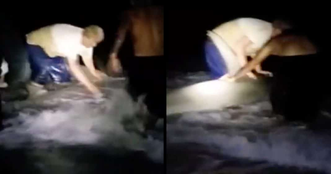 Men Try To Save Injured Hammerhead Shark, Then Realize It's Hiding A Secret