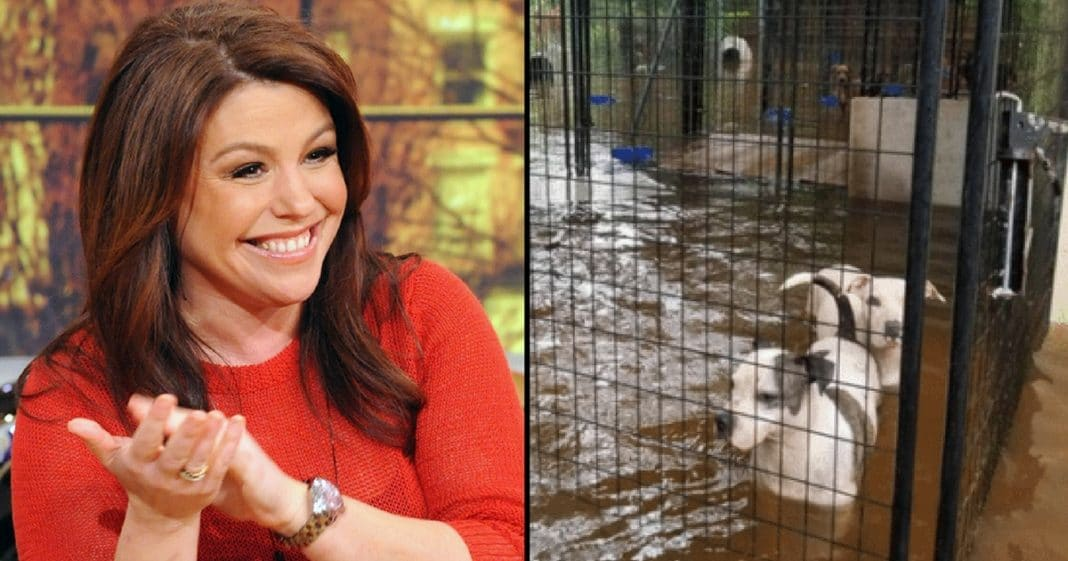 Rachael Ray Gives $1 Mil To Harvey Victims, But People Notice It's Different Than Everyone Else's