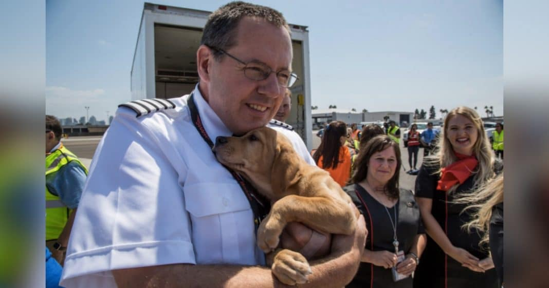 Texas Shelter Overcrowded After Harvey. What Southwest Pilot Does Next Will Melt Your Heart