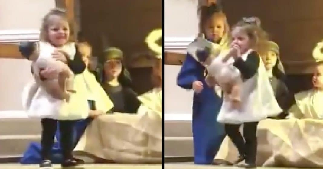 Sheep Steals Baby Jesus During Nativity, But Mary Isn't About To Let Her Get Away