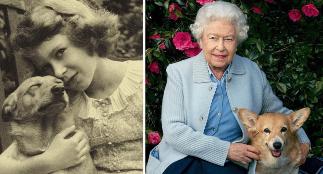 Queen Elizabeth Left 'Heartbroken' Following Death In Royal Family