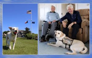George H.W. Bush, Bill Clinton, Sully the service dog