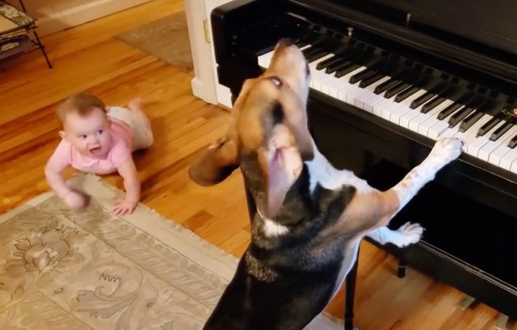 Baby chatters and heads over to the piano