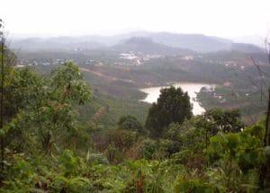 Lâm Đồng, Vietnam via Wikimedia Commons