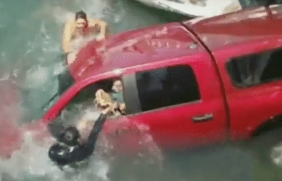 Heart-Pounding Moment Strangers Pull 87-Yr-Old, Her Son And Dog To Safety After Truck Plunges Into Water