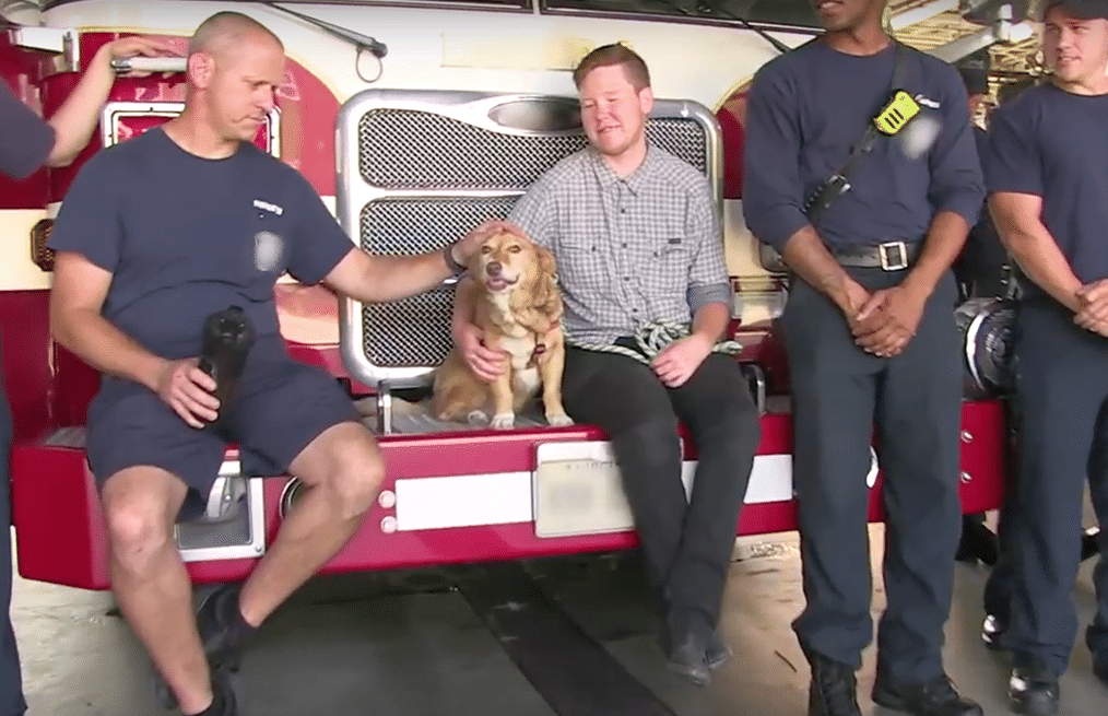 Miss Willie enjoys a day with the local firefighters at the station