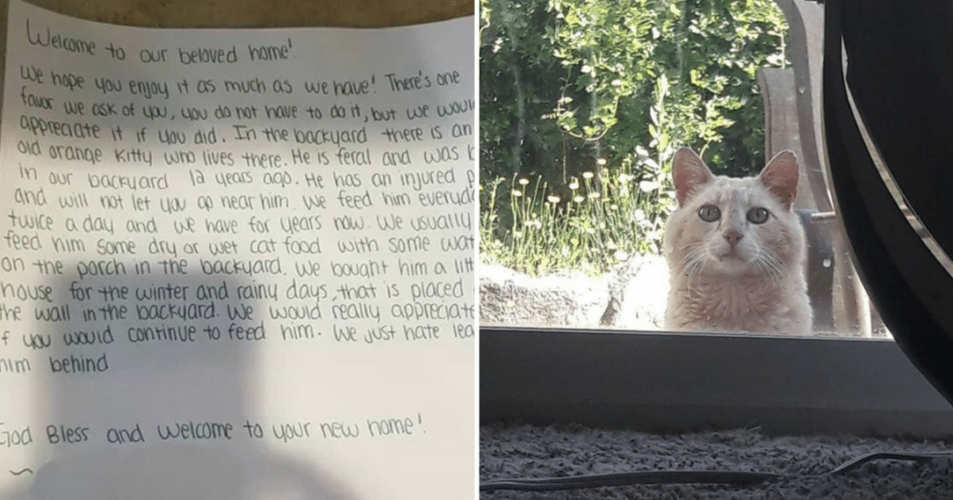 Family Finds Note In New Home With Instructions From Previous Owners, Then See Cat Peeking In