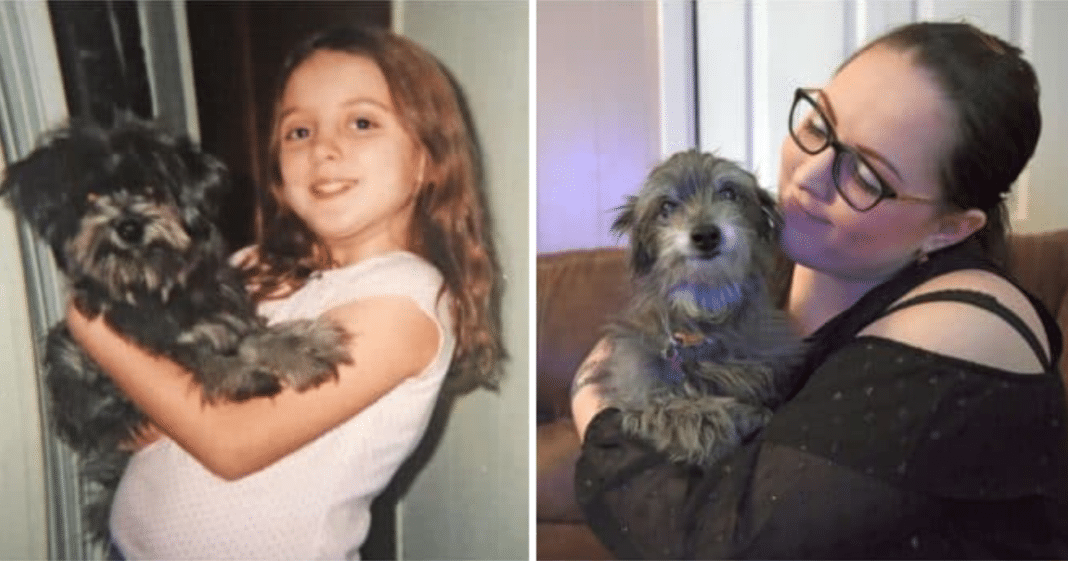 She Adopts Dog That Reminds Her Of Childhood Pet Dad Made Her Give Up, Then Vet Confirms Her Suspicion