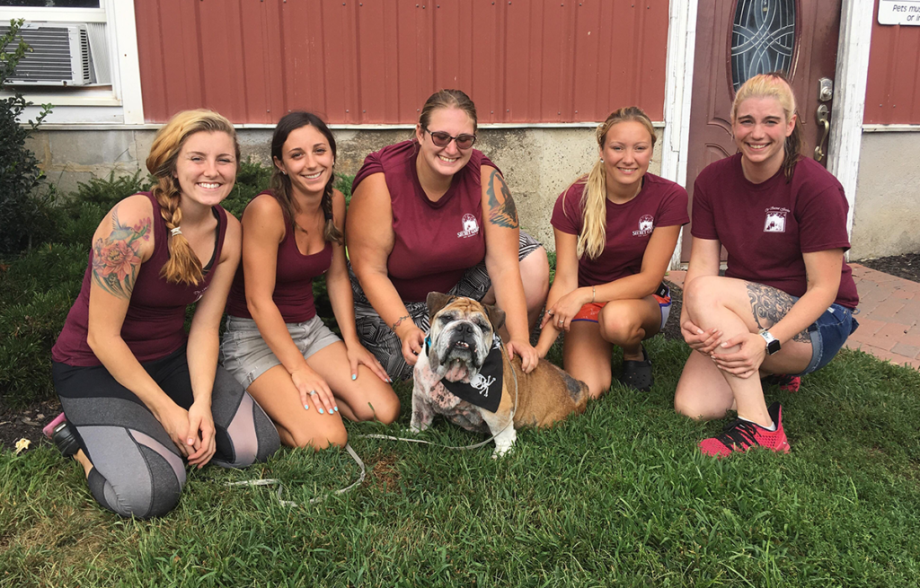 Willie at the Long Island Bulldog Rescue