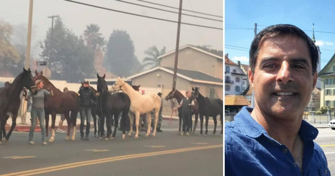 Hollywood Stuntman Risked His Own Life To Save Hundreds Of Horses From California Wildfires