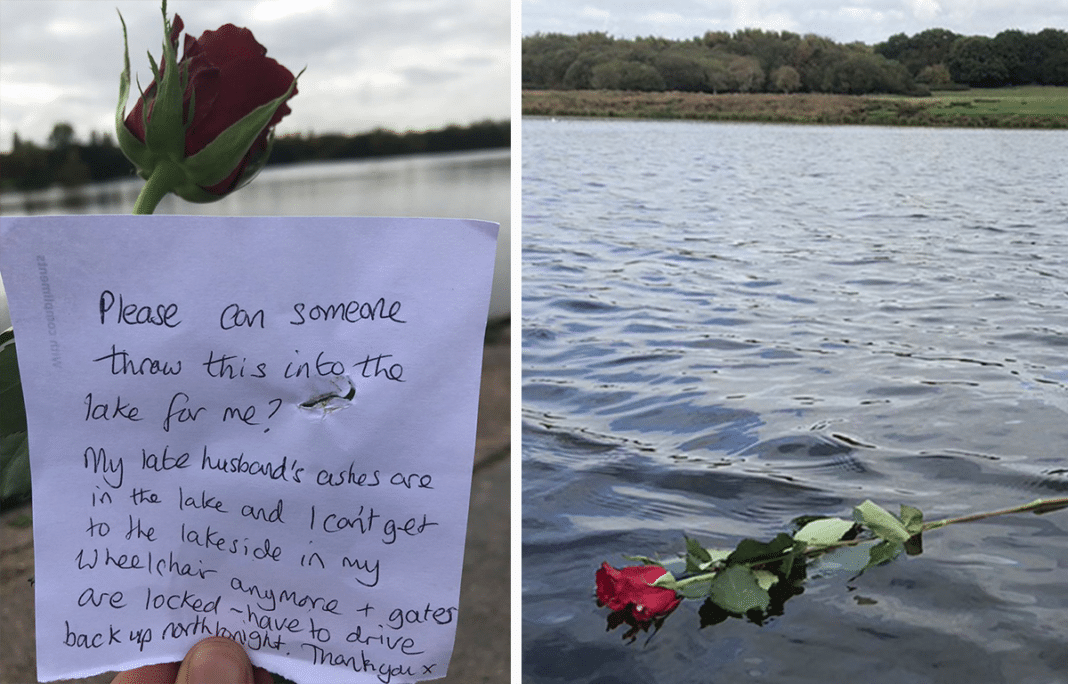 Wheelchair-Bound Widow's Wish Fulfilled After Leaving A Single Rose And Heartbreaking Note On Gate