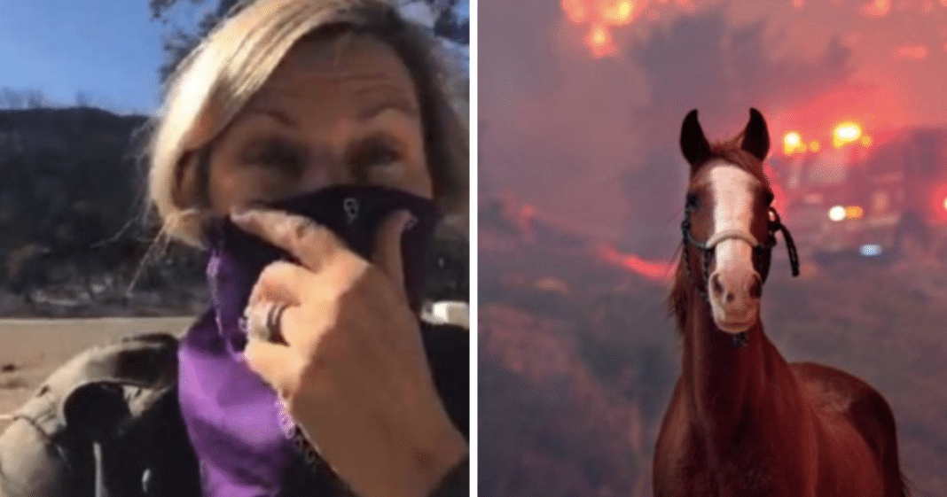 Hollywood Actress Saw Home Miraculously Saved From Wildfires After Praying Psalm 91