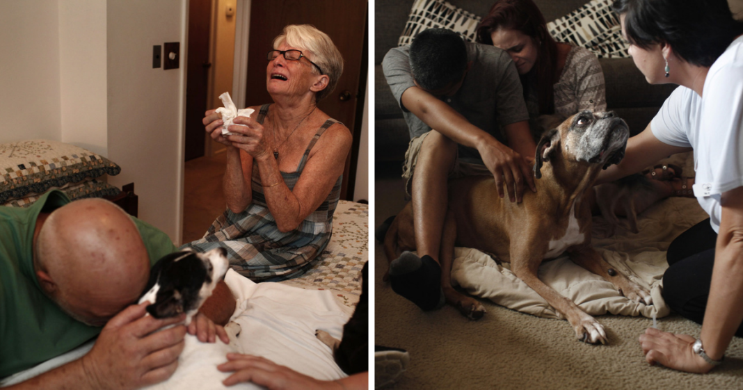 Heartbreaking photos of pet owners saying final goodbye to their dying pets