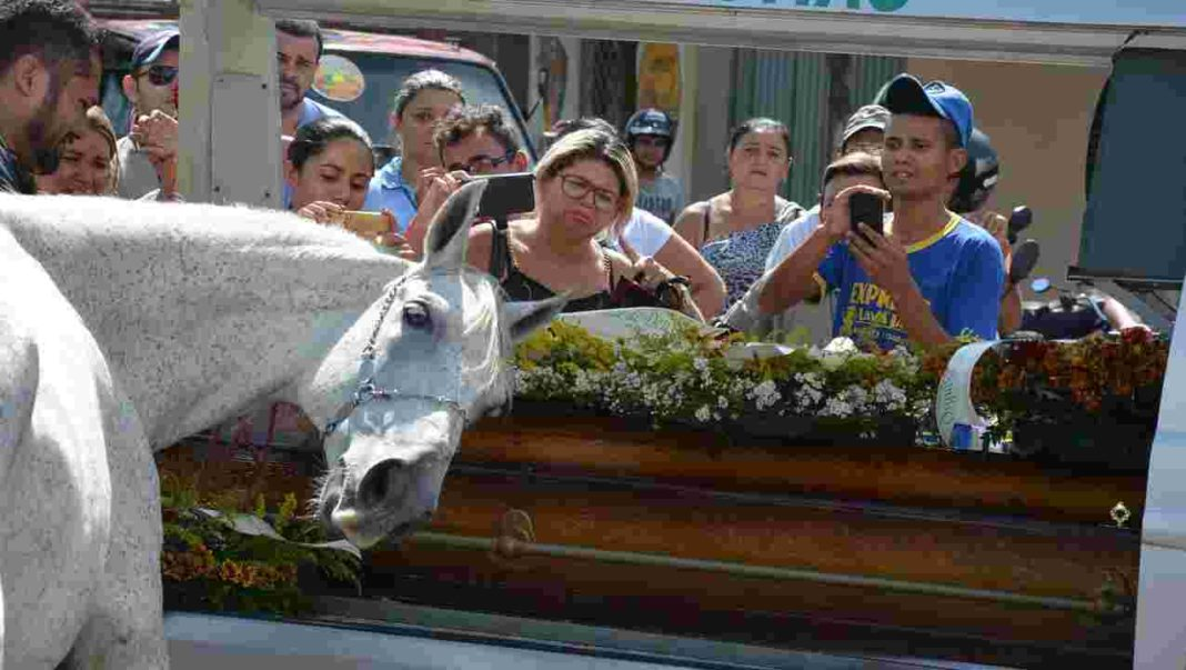 Gut-Wrenching Video Of Horse Crying At His Owner's Funeral Will Break Your Heart
