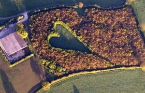 Howes's Meadow via Facebook