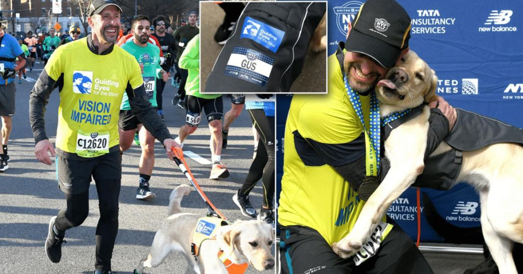 3 Labrador guide dogs help blind marathon runner make history